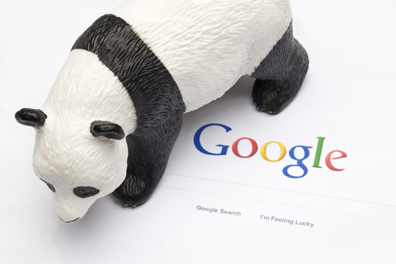 Panda Territory
